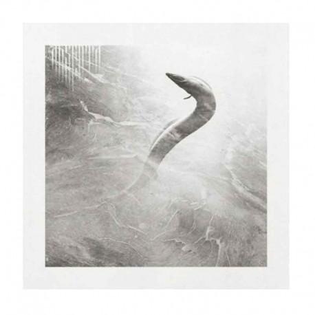 ABSENTA - Eel CD