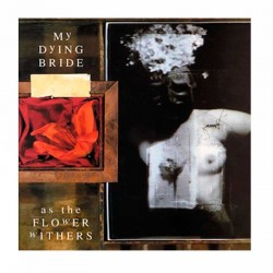 MY DYING BRIDE - As The Flower