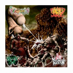 "VAGINAL KEBAB/ SCROTOVARIOS/MUTILATED JUDGE/HUMAN SCRAP 12"" SPLIT"