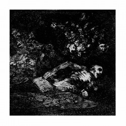 """CRYPTIC WANDERINGS / IN THE SHADES 7"""" EP"""
