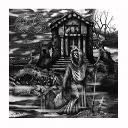 AMNION - Cryptic Wanderings LP