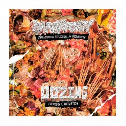 OOZING/PHARMACIST - Forbidden Exhumation/Thanatological Reflections On Necroticism CD EP Split